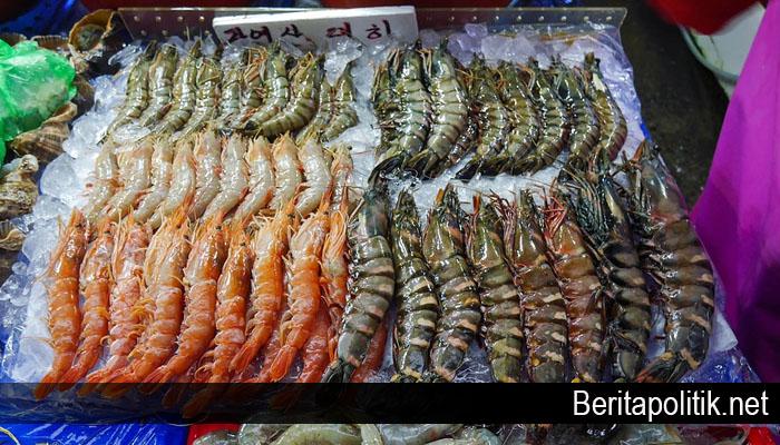 Pemerintah Dorong Budidaya Udang dan Kepiting di Kepri